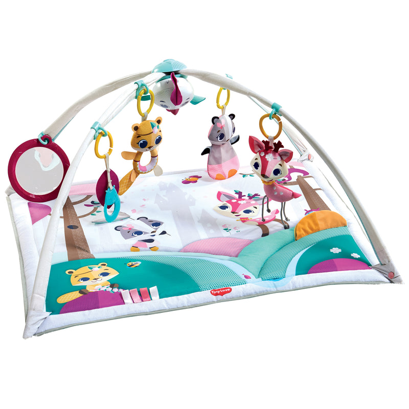 Tiny Princess Tales Deluxe Gymini