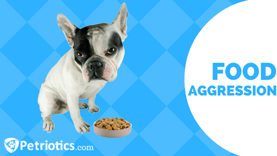How to Avoid Food Aggression in Dogs