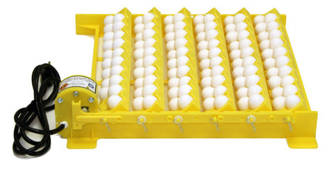 Automatic Egg Turner With Racks for Small and Large Bird Eggs For GQF Manufactured Table-Top Styrofoam Incubators