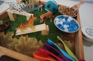 Dog Park Sensory Play Kit