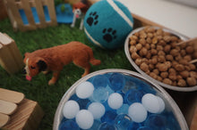Load image into Gallery viewer, Dog Park Sensory Play Kit