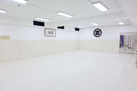 WALL MATS for BJJ and MMA