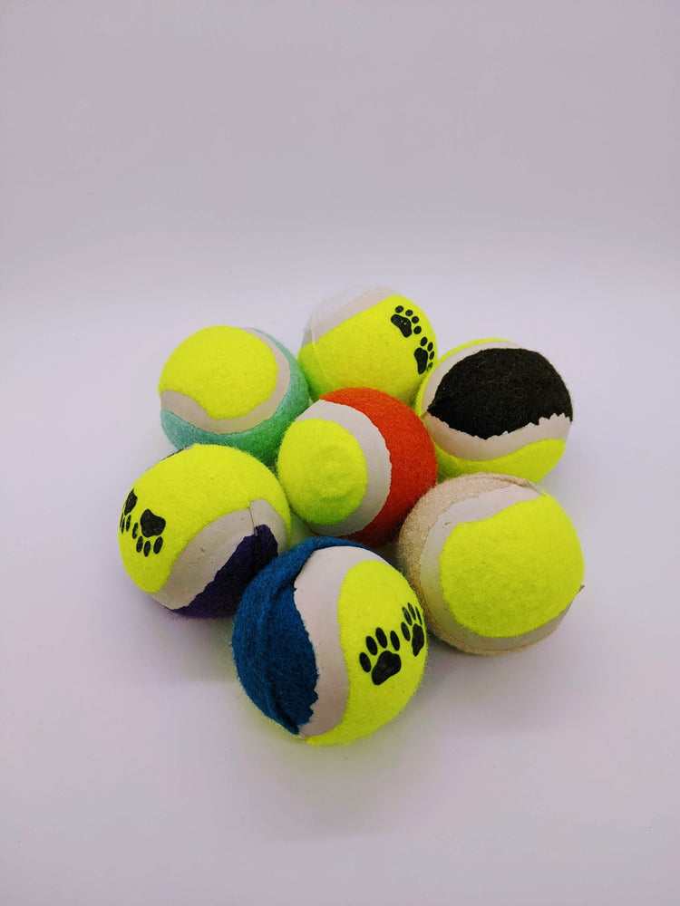Assorted Paw Tennis Ball Bundle