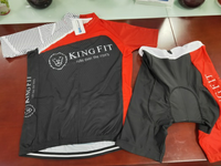 Cycling Jersey and Shorts set - Large