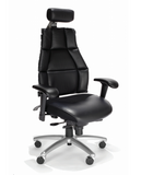 Anthro Ergonomic Verte Chair 904BK