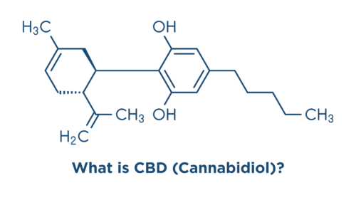 articles/what-is-cbd-featured.png