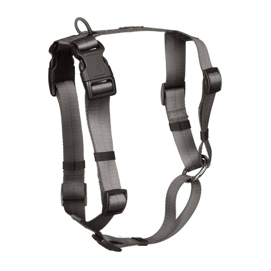 Anchor Dog Harness