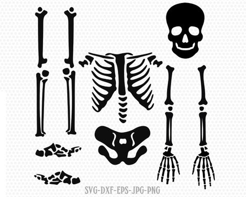 Skeleton parts kit SVG, halloween skeleton svg, skeleton svg, Halloween Svg ,CriCut Files svg jpg png dxf Silhouette cameo