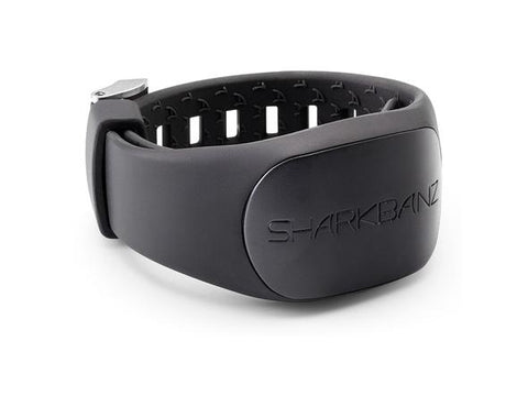 SHARKBANZ 2 BLACK / SLATE