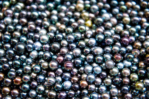 Collins Pearls Tahitian pearls in French Polynesia