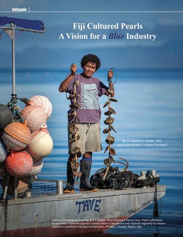 """Fiji Cultured Pearls, A Vision for a Blue Industry"" in InColor Magazine"