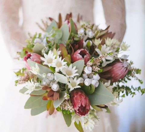 flannel flower bouquet