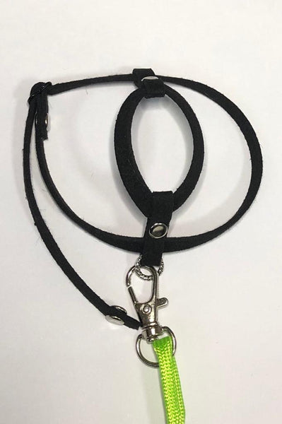 XX-Small/Petite Harness with Leash