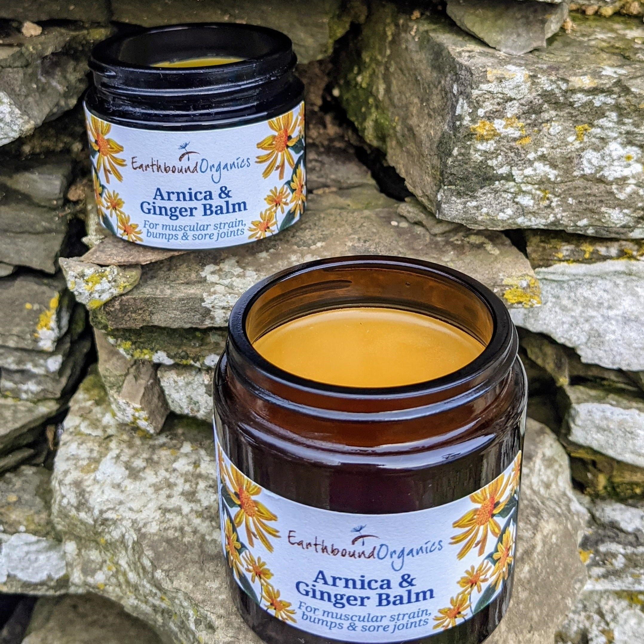 Arnica and Ginger Balm (50ml)
