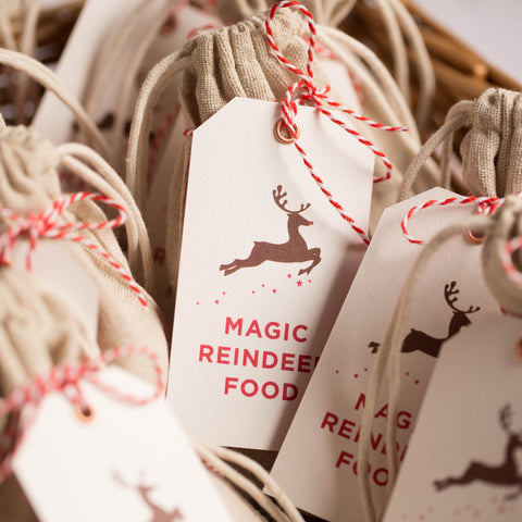 Festive Fingerprints Magic Reindeer Food Kit