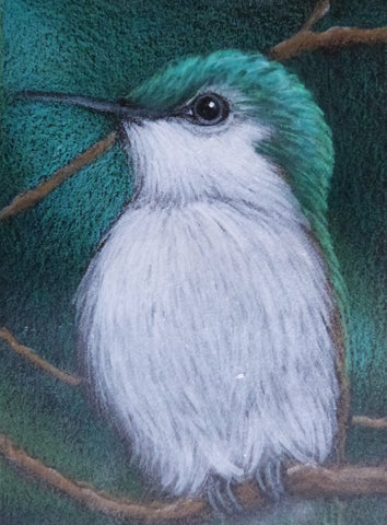 "Minature - Cyra R Cancel ""Green tailed hummingbird"