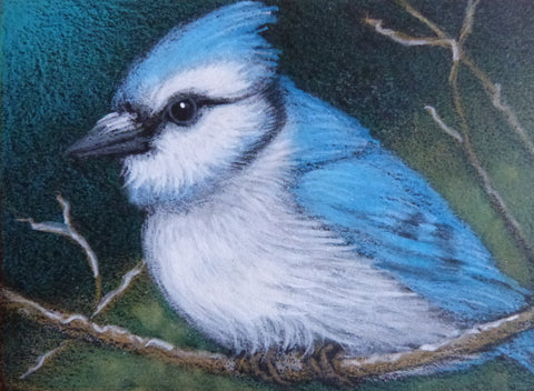 "Minature - Cyra R Cancel ""Mr Blue Jay Bird"""