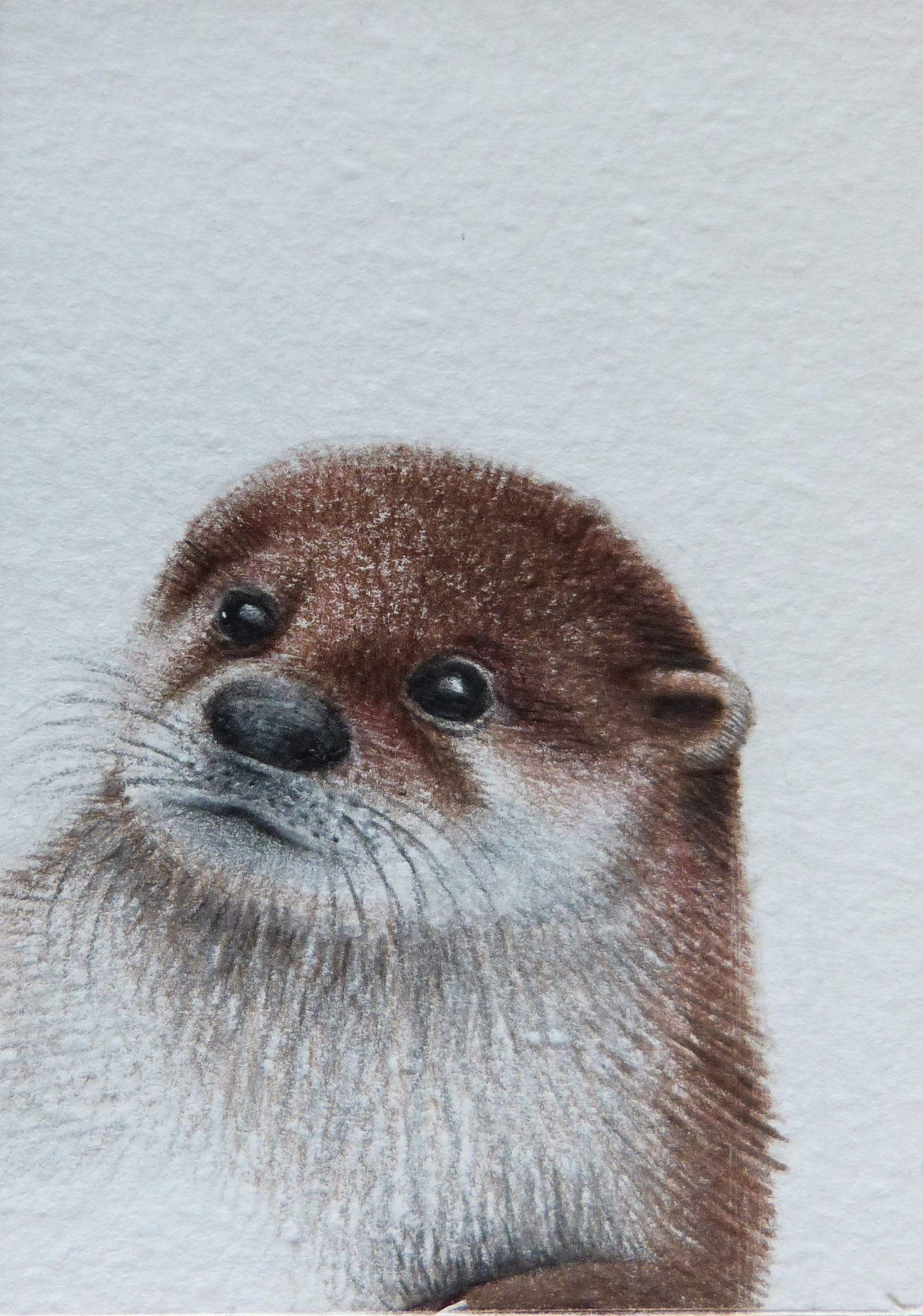 Minature - E Peters - Otter
