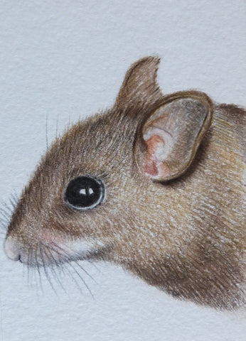 Minature - E Peters - Woodmouse