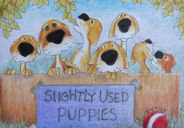 "Minature -Roselea K Smith ""Sligthly Used Puppies"""