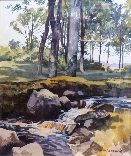 "John Skelton ""Woodland Stream, Bellewstown, Co. Meath (1997)"