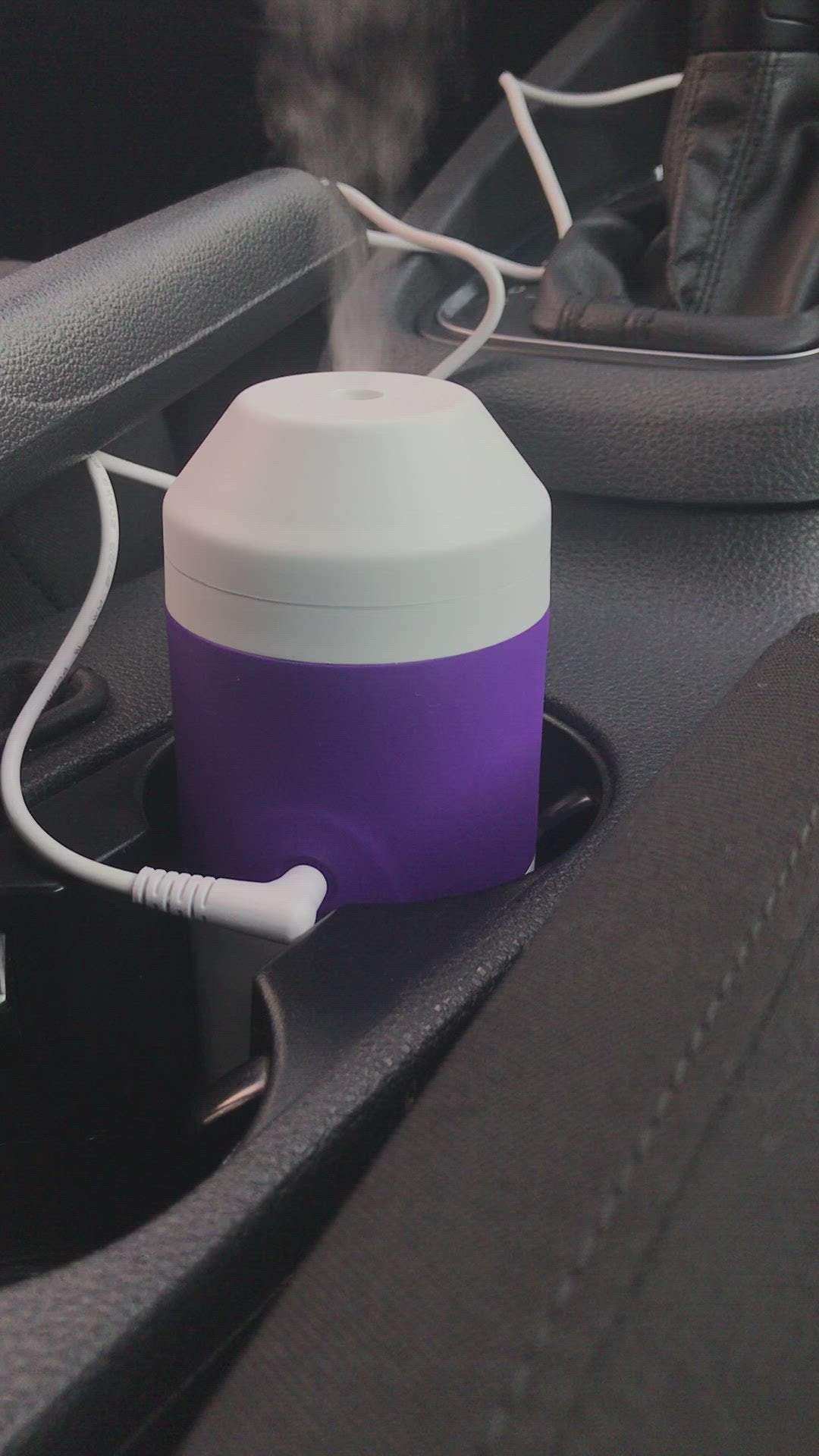 Bioesque Disinfectant + ZAQ Essential Oil Car Diffuser