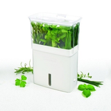 Cole & Mason Fresh Cut Herb Keeper