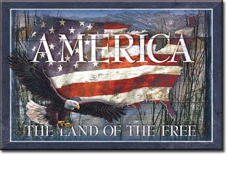 America - Land of the Free - Magnet