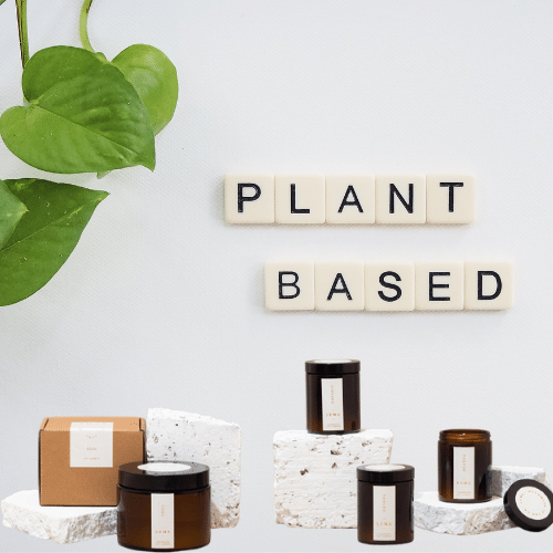 Vegan, cruelty free candles arranged around a white background with scrabble tiles spelling the words plant based. Ivy plant to the side