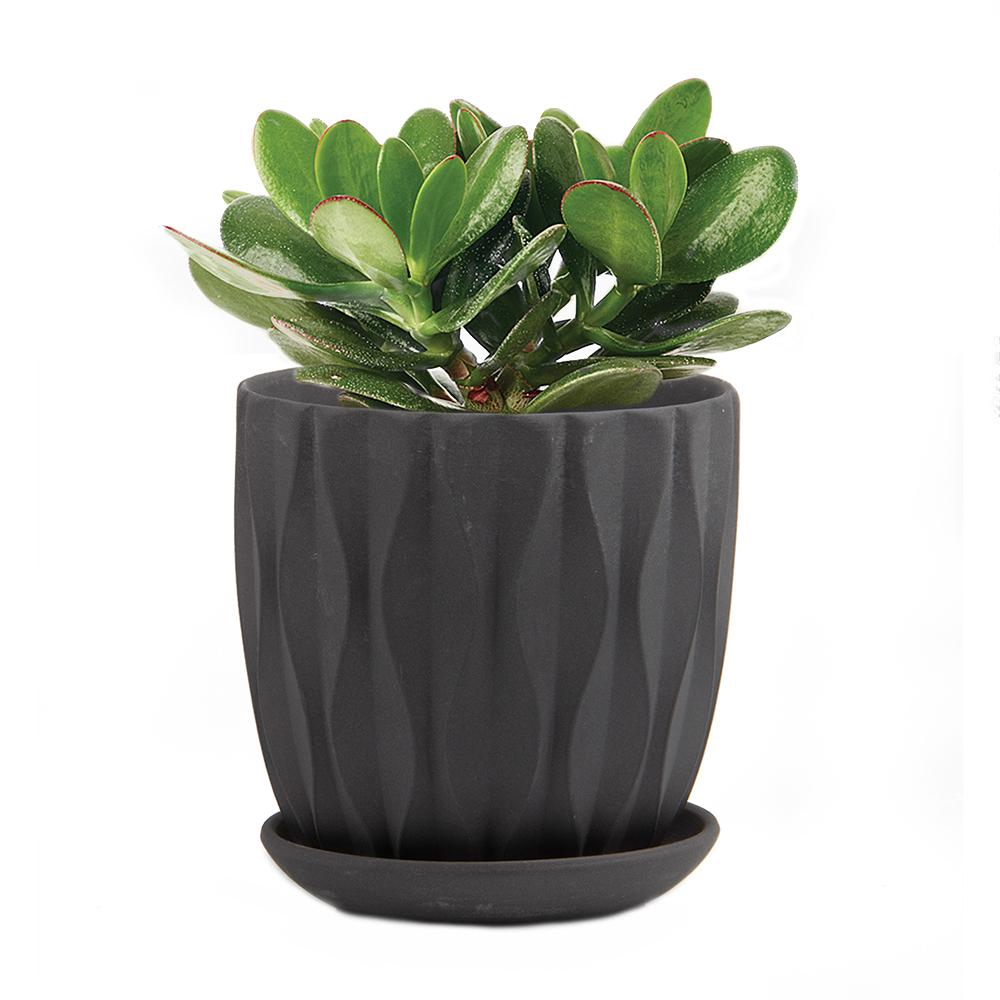 Virago Small Planter, Multiple Options
