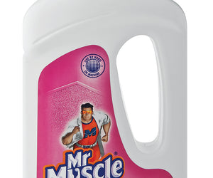 Mr Muscle Carpet Cleaner Potpourri 1 x 750ml