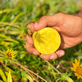 Chamomile and Curcuma Solid Shampoo