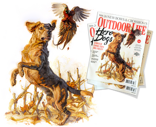 Heroes, Dogs... and Hero Dogs. From Canvas to Cover for the August, 2017 Cover of Outdoor Life