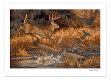 """River Runners"" Artist Proof Paper Print"