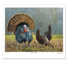 """Turkey Country"" Artist's Proof Paper Print"
