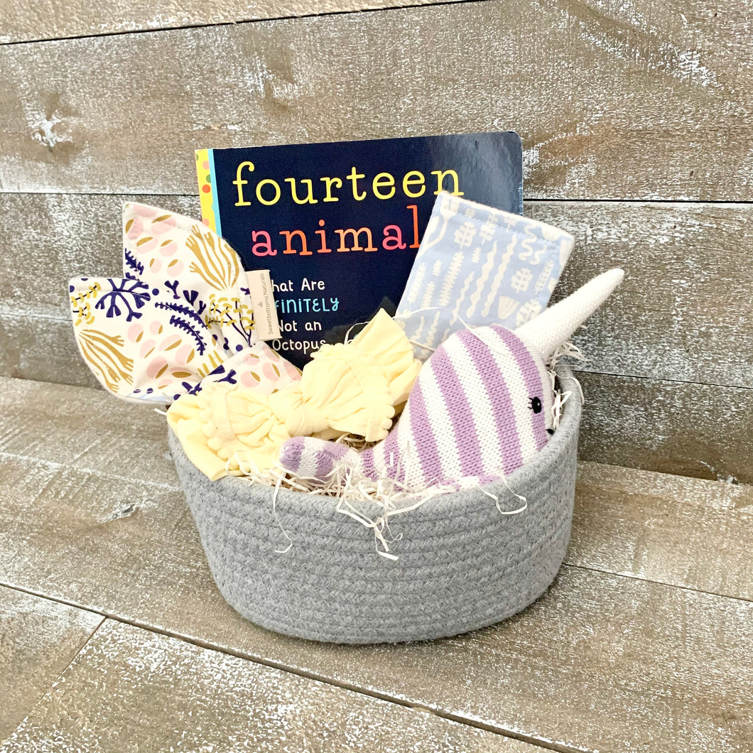 Nautical Baby Basket