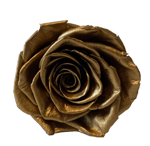 Gold Roses Redlands Fresh flowers