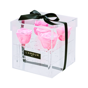 Light Pink Petite Acrylic Box