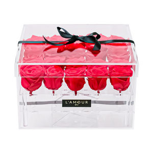 Red Large Acrylic Box