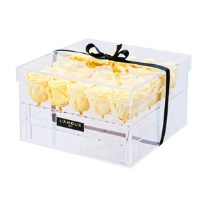 Yellow Large Acrylic Box