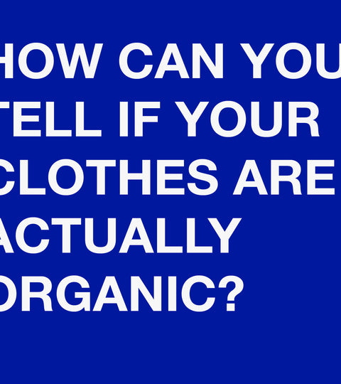 Are Your Clothes Organic?