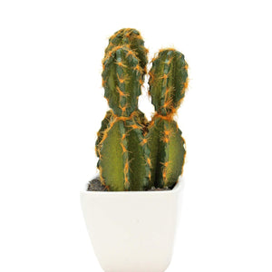 Art.5840 Follaje Plástico Cactus Con Base