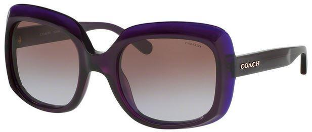Coach Sunglass | Square Shape Purple / Brown Gradient HC8194 524968 53MM
