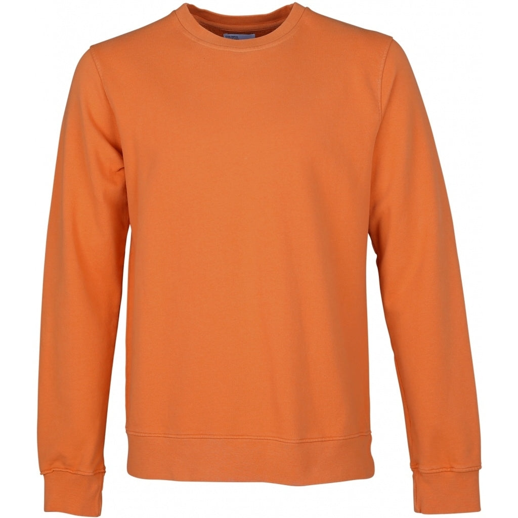 Colorful Standard / Organic  Crewneck / Burned Orange