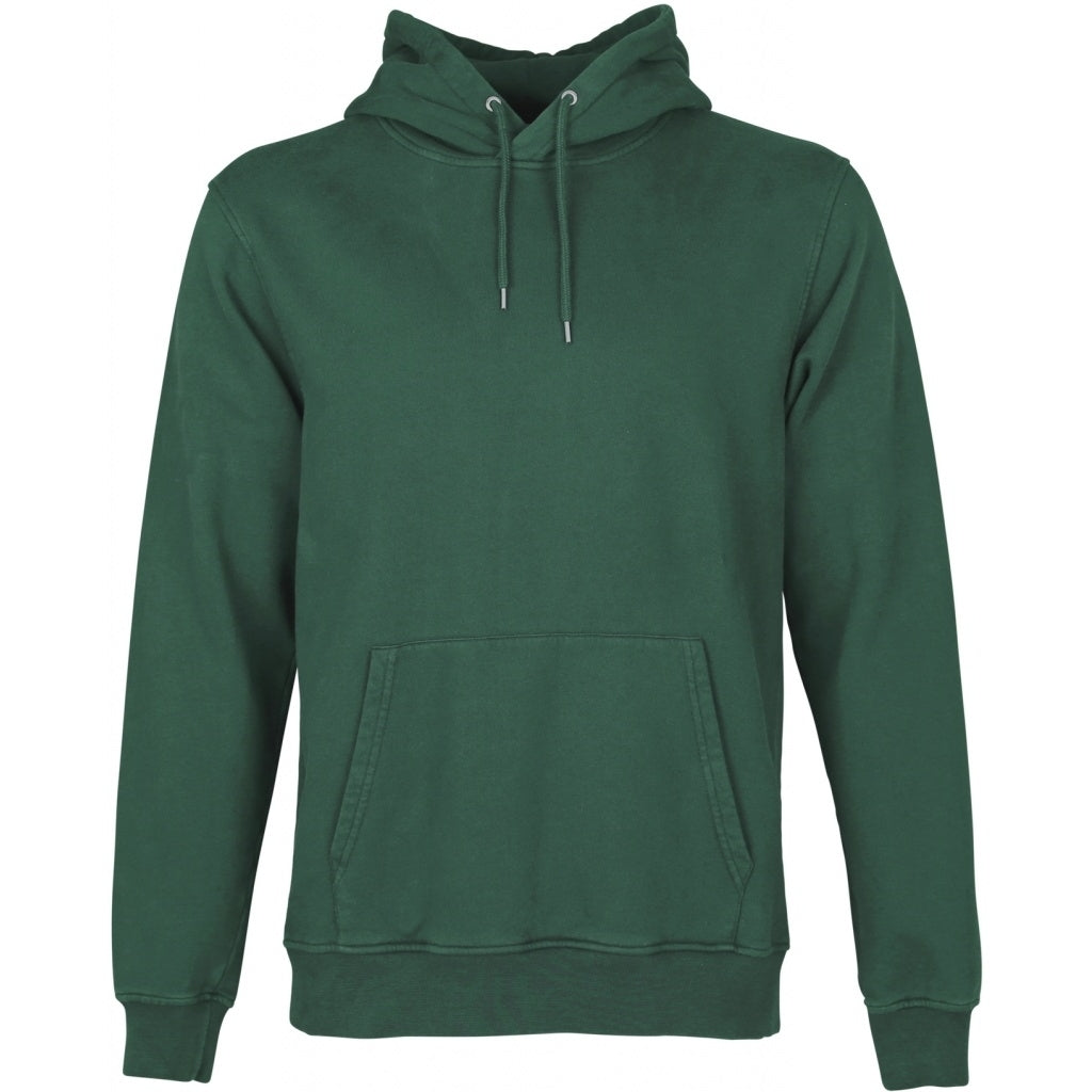 Colorful Standard / Organic Hoodie / Emerald Green