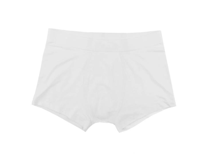 The Product // Bamboo Boxer x 2 - White