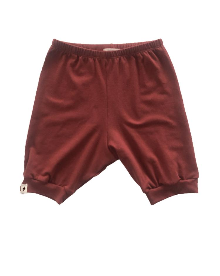 Milo Shorts in Brick