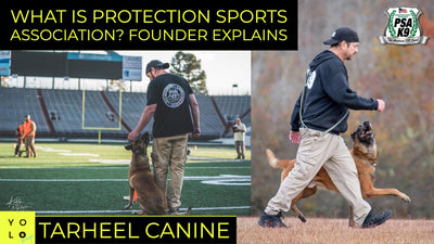 American Dog Legend & Protection Sports Association Co-Founder Jerry Bradshaw