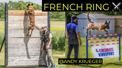 Intro to French Ring with Super Select Decoy & Pro Trainer Andy Krueger