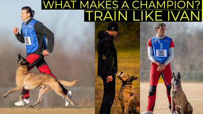 Champion's Journey: Revolutionary Dog Trainer & Pioneer in Dog Sports & Genetics, Ivan Balabanov